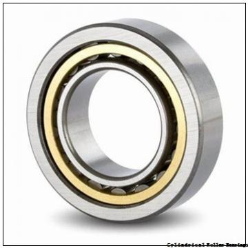 17 mm x 40 mm x 12 mm  FAG NU203-E-TVP2  Cylindrical Roller Bearings