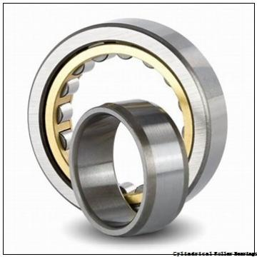 160 mm x 290 mm x 48 mm  FAG NU232-E-M1  Cylindrical Roller Bearings
