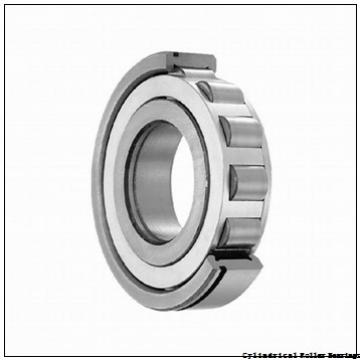 3.74 Inch | 95 Millimeter x 6.693 Inch | 170 Millimeter x 1.26 Inch | 32 Millimeter  NSK NUP219W  Cylindrical Roller Bearings
